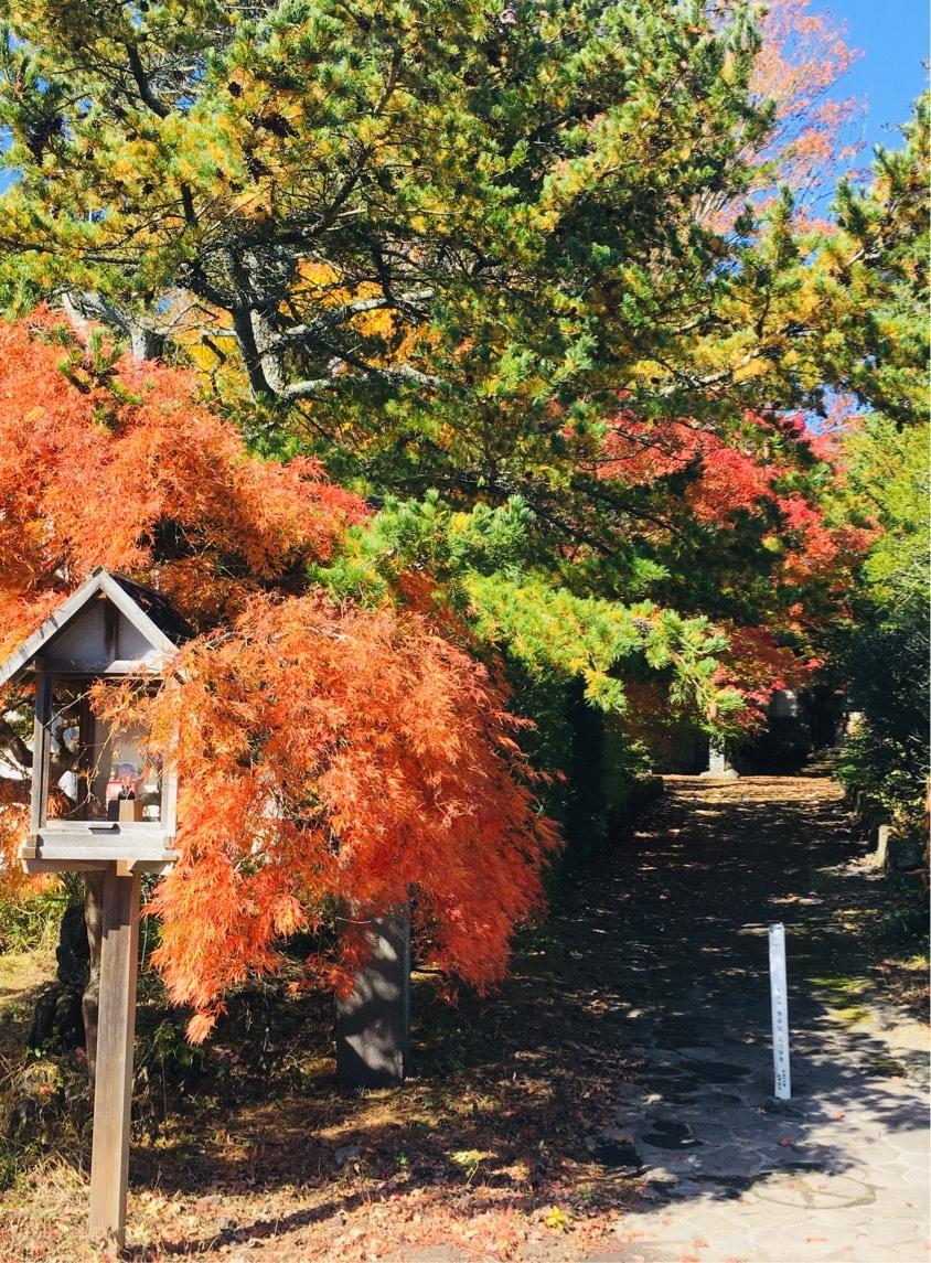 秋の軽井沢の服装: 子供から大人までの服装を現地からレポート
