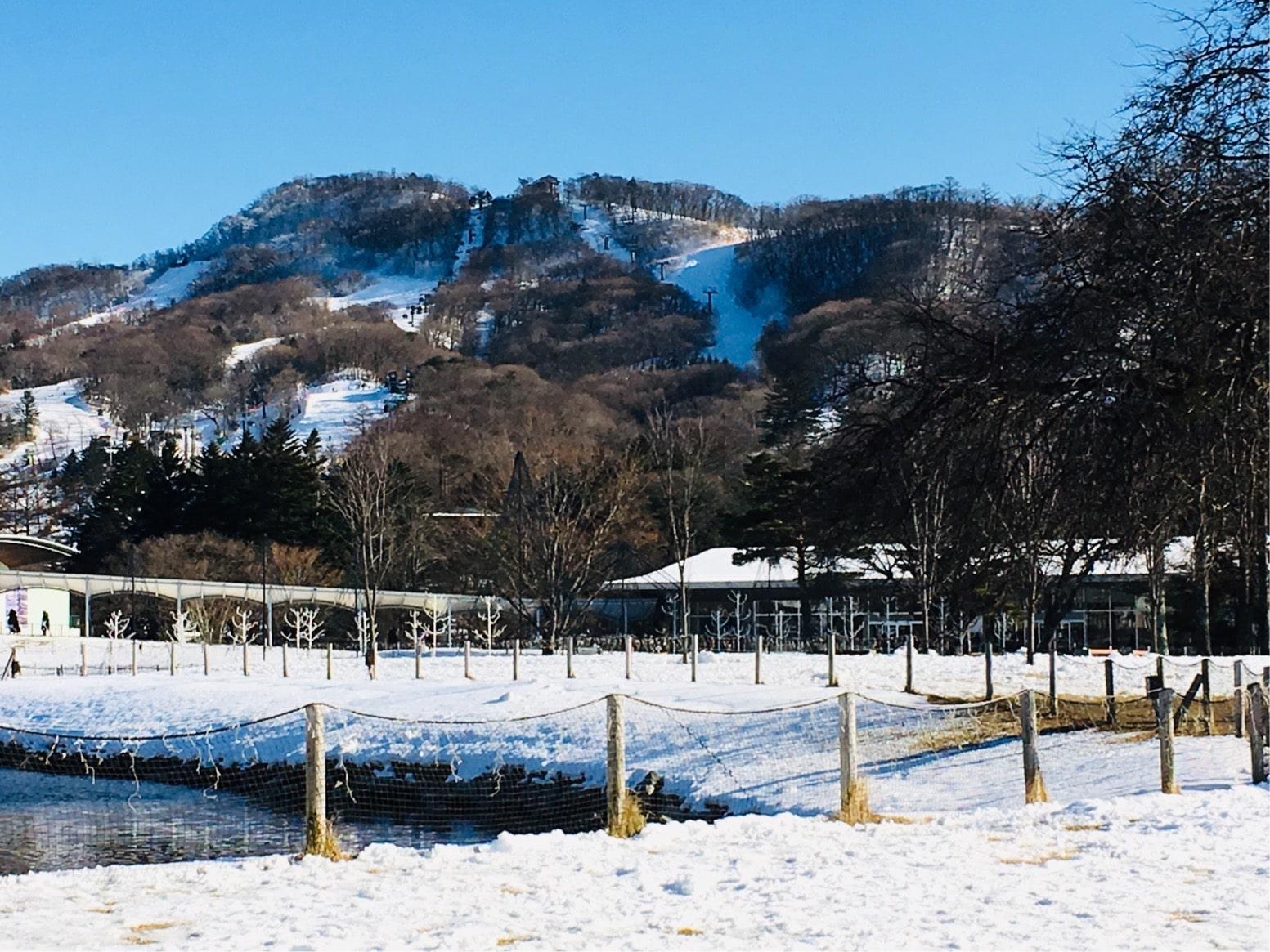 冬の軽井沢アウトレット:クリスマス当日の混雑状況やセールの状況は?